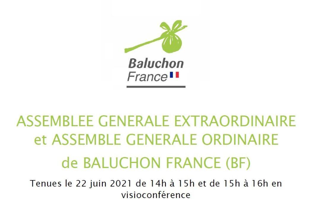 Tenue de l'Assemblée Générale de Baluchon France